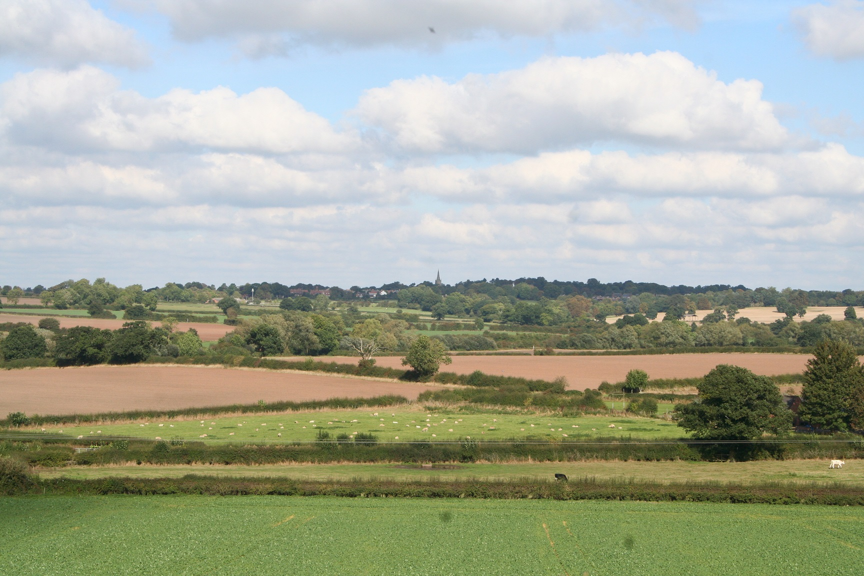25 View from Bosworth Battlefield