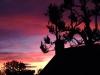 33 A Market Bosworth Sunset